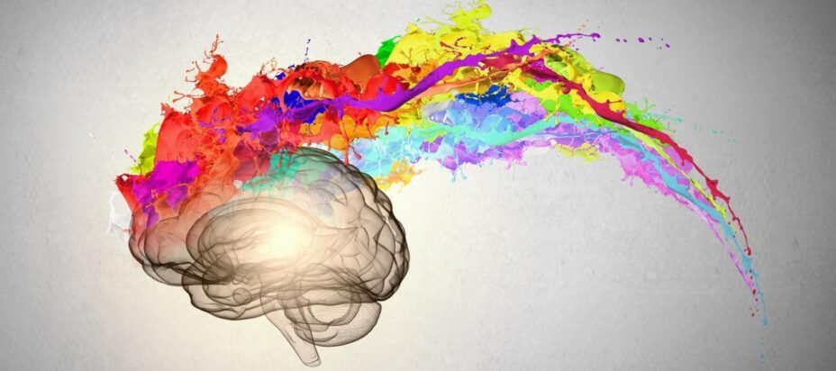 erecția dopaminei